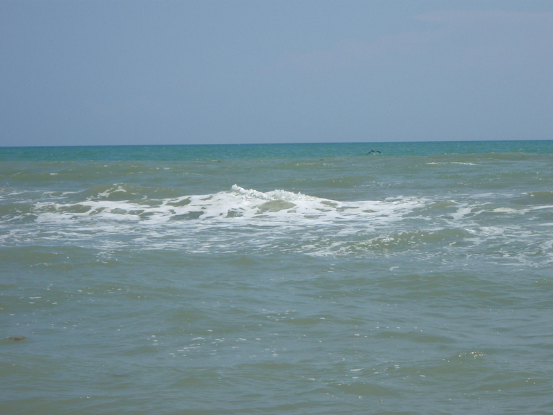 South padre island labor day fishing report w hd video for South padre fishing report