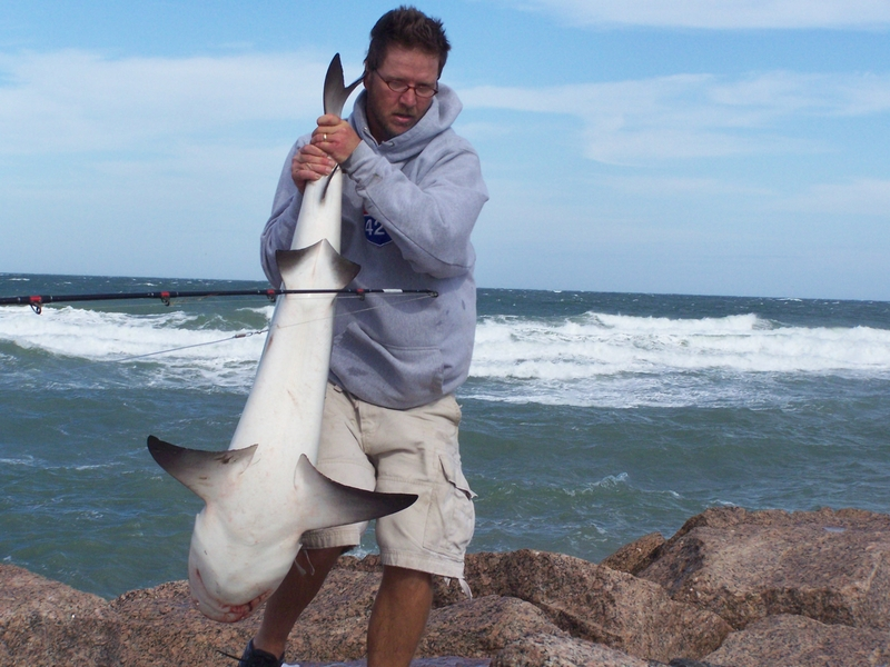 Texas shark fishing photo video album fishing south for South padre island fishing