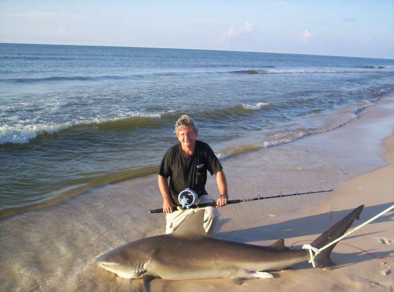Fall florida shark fishing report florida shark fishing for Shark fishing in florida