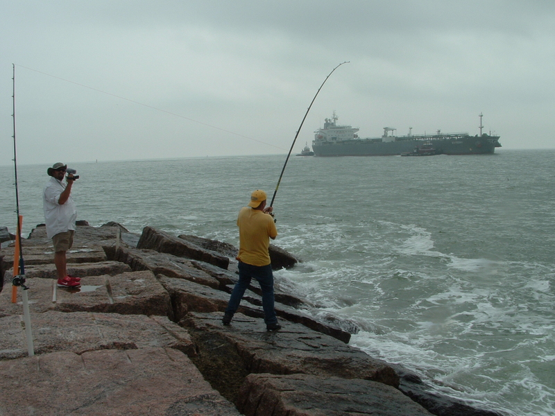 Surfside jetty december 20th redfish and drum trip texas for Surfside fishing report