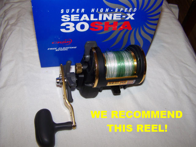 Surf fishing reels for Shark fishing gear for beach