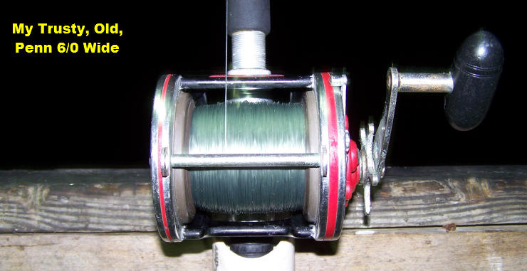 Penn 6/0 Wide. The Reel I have Fished with Since 2000!